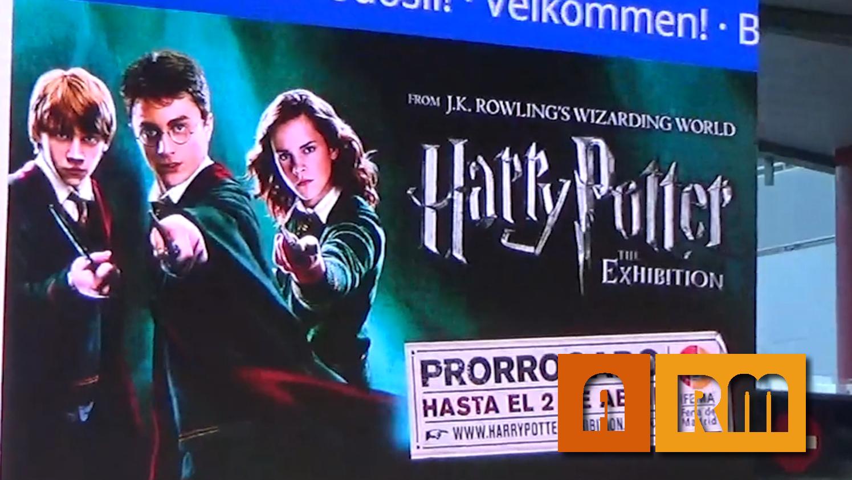 Harry Potter The exhibition (Especial Navidad)